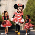 Aaa La Nouba Discount Tickets. 20% off Disney World Discounts on Tours, Shows, Water Parks 20% off. kabor.ml - Free guide to discounts for Disneyland, The final performance of La Nouba was December 31, or get 20% off full ticket price after am.